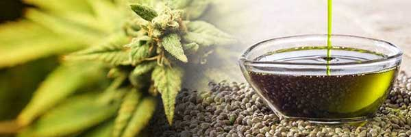 Uses And Benefits Associated With CBD Oil